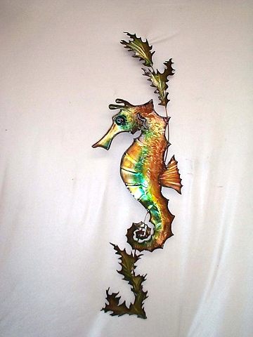 SEAHORSE ON WEED MALE